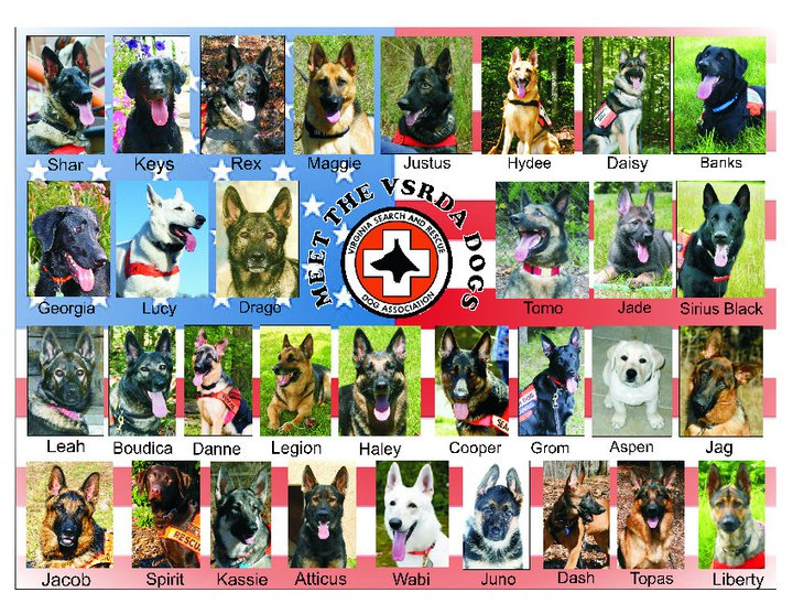 2012 Meet the Dogs of VSRDA